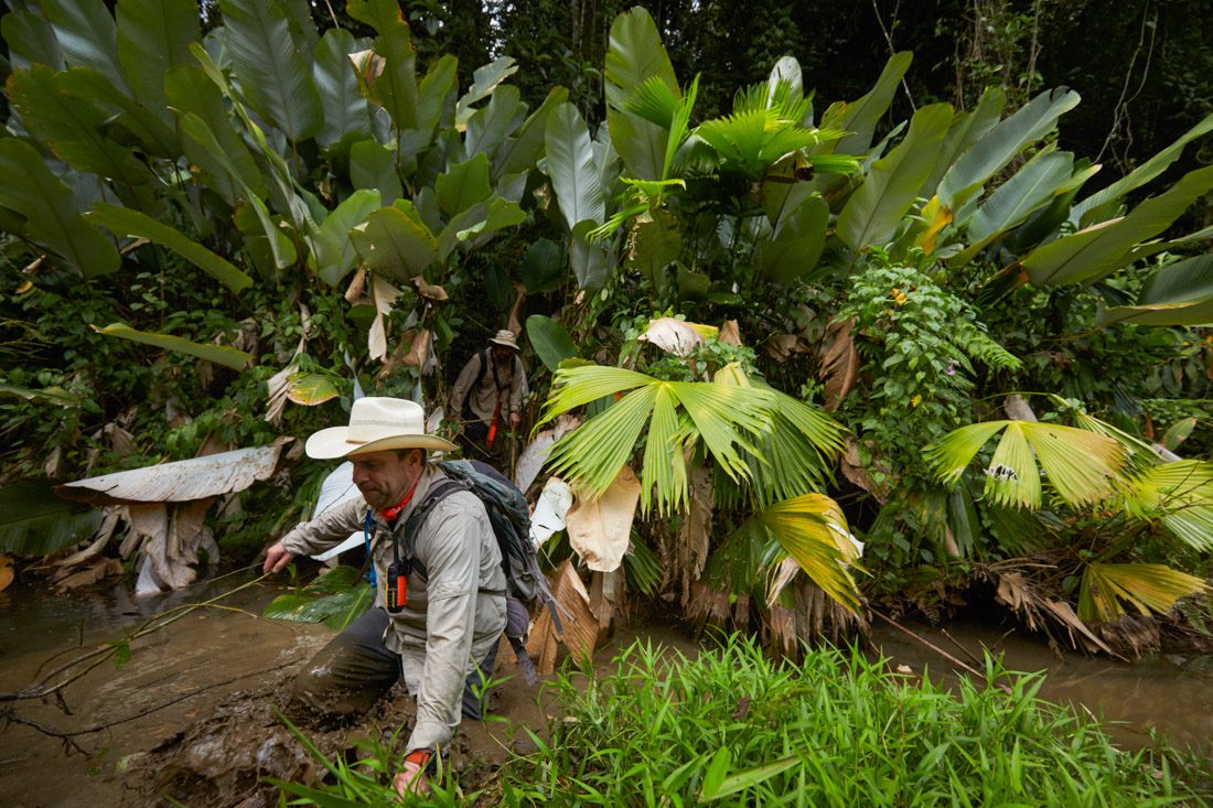 Archeologists explore virgin jungle in the Mosquitia while looking for evidence of a lost civilization.