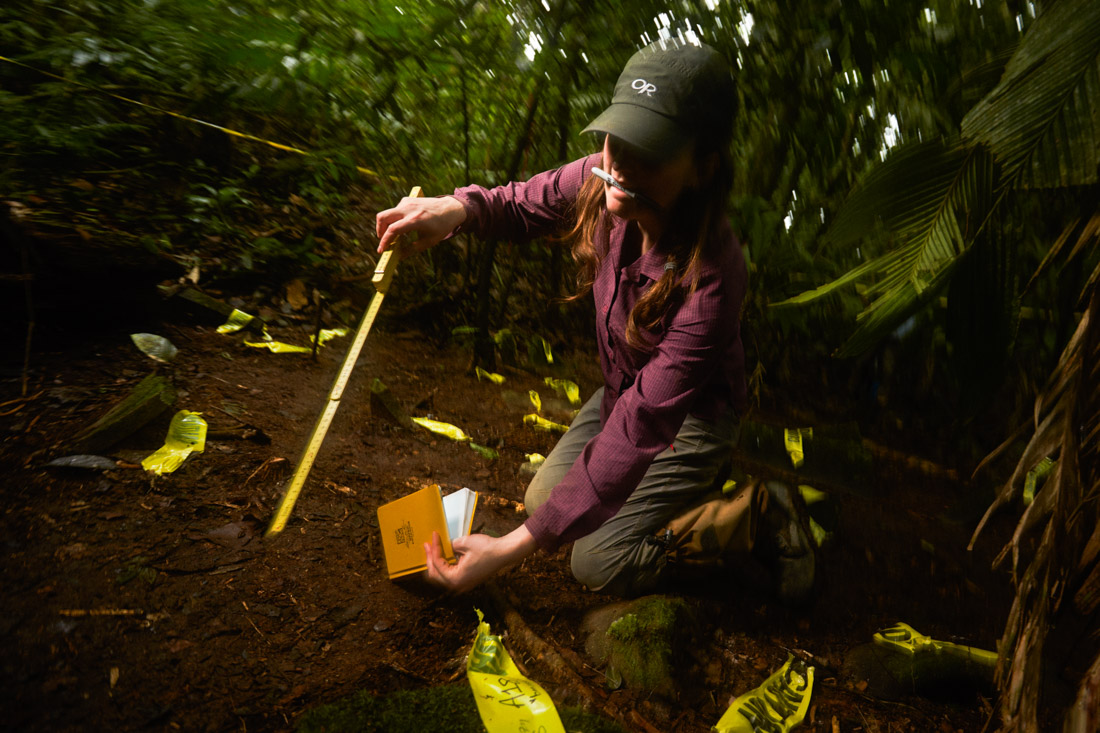 Archeologist Anna Cohen numbers individual artifacts in a cache of at least 51 found. She will document them and they were eventually covered again to hide them from looters in the hope of someday conducting a proper excavation.