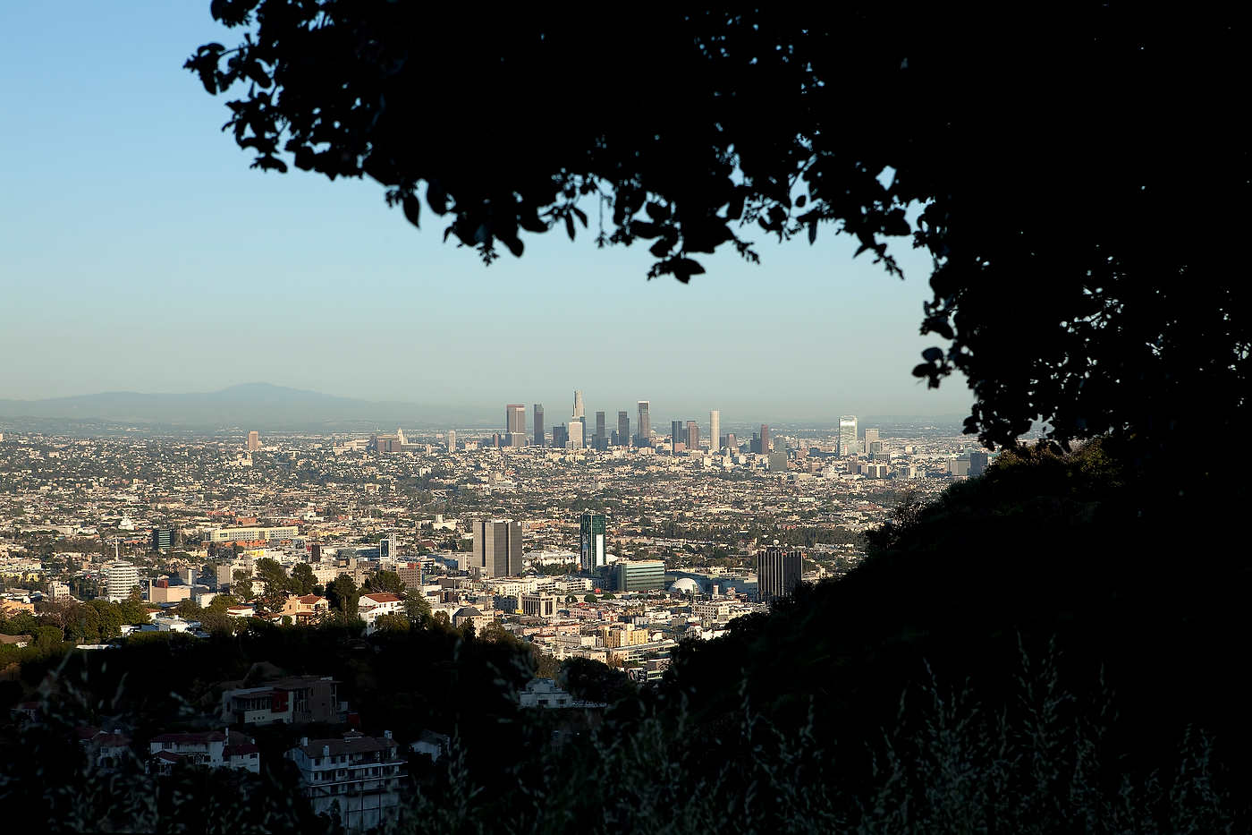 Los Angeles seen from the Hollywood Hills.
