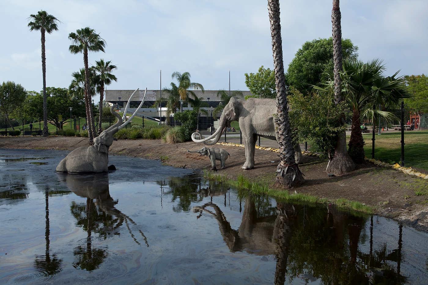 Cement mastodons, La Brea Tar Pits, Line 720.