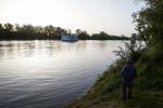 Fisherman, Sacramento River.