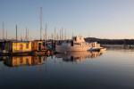 Houseboats at sunrise, Sausalito.