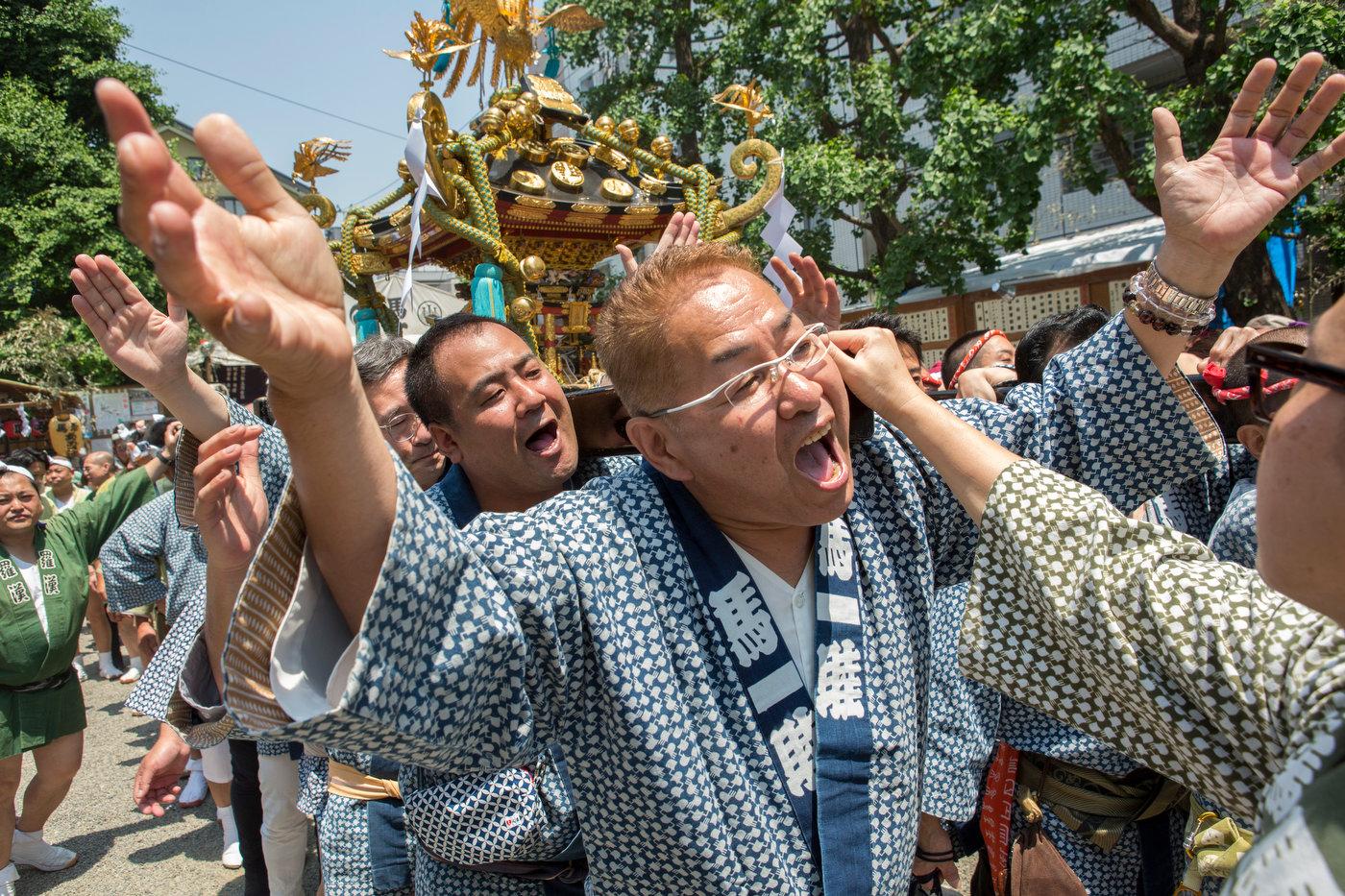 Sanja Matsuri Festival, Asakusa.