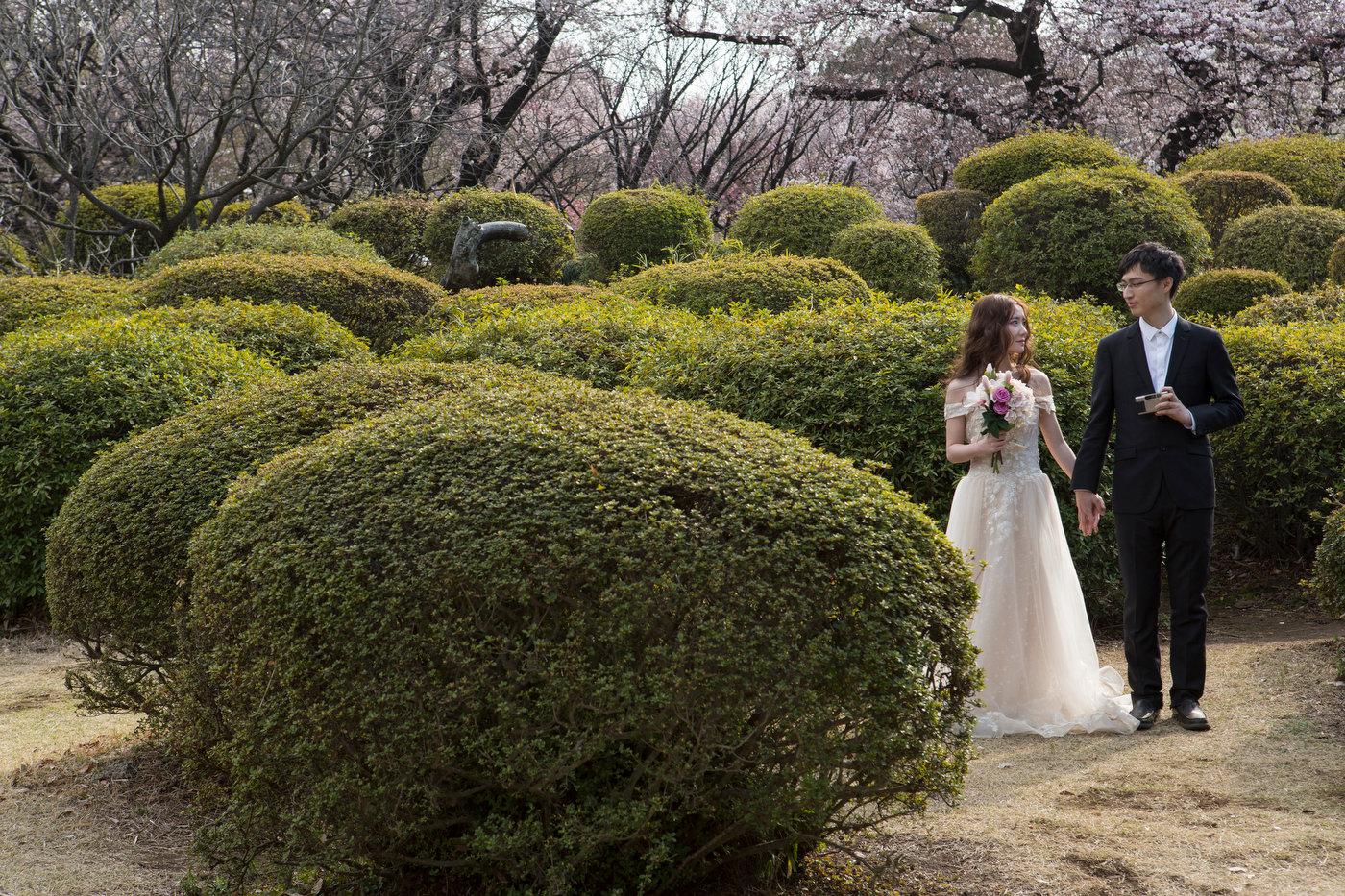 Western style wedding, Shinjuku Gyoen park.