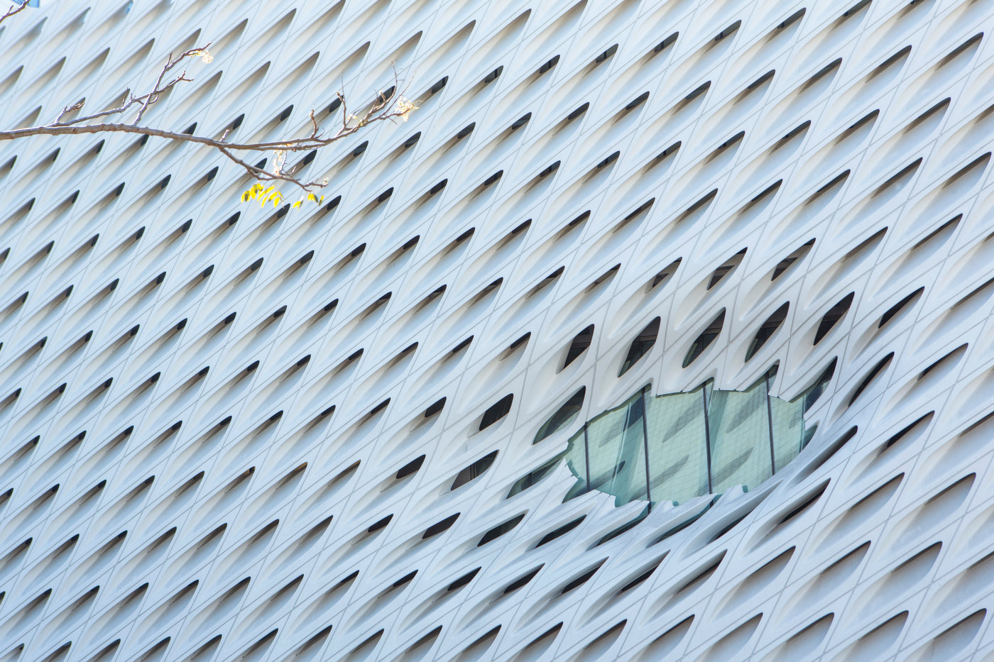 Broad Museum, Los Angeles (for The Good Life).