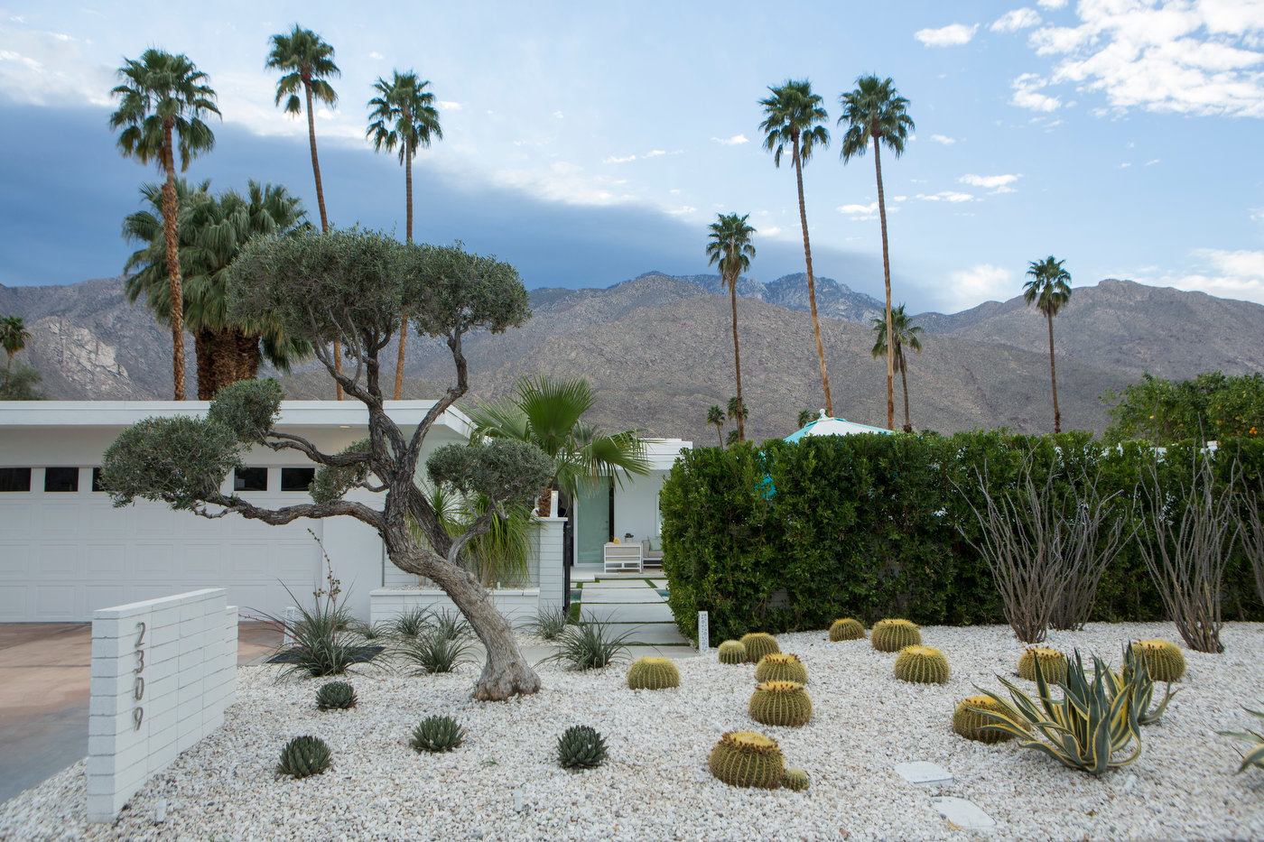 Modernist Week, Palm Springs (for IDEAT).