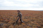 Sarah Palin hunts caribou near Kavik, north of the Arctic Circle.
