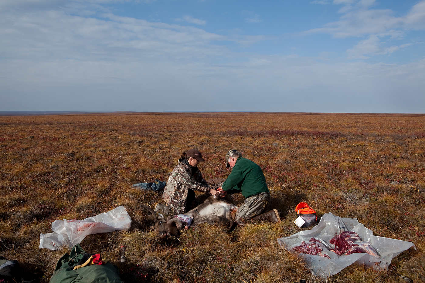 Sarah Palin and her father dress a caribou that she just shot near Kavik, north of the Arctic Circle.