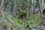 Patagonia_Mingasson-0675