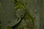 MINATO, TOKTO -MAY 2017: A Buddhist statue (??) collects moss in the lush, quiet Nezu Museum Japanse gardens, an oasis of tranquility in the middle of one of the world's largest metropolis. The museum is known for its stunning and extensive Japanese-style garden: within the confines of the museum nestled in the fashionable district of Omotesando, narrow paths run through the garden, leading to a pond from a natural source. Four pavilions devoted to tea ceremony with great greenery composition are spread over an area of 1700 m². One of the tea houses was specially built to watch the splendor of the purple foliage of Japanese maples. Along the garden many winding paths, Buddhist statues collect  moss, a symbol of a silent purity. Re-opened in 2009 with a completely new museum building by the Japanese architect Kengo Kuma, the Nezu museum houses the private collection of pre-modern Japanese and East Asian art of Nezu Kaichirō (1860–1940). The museum collection was stored away from central Tokyo during the second world war and escaped the destruction suffered by the estate property in the bombing of May 1945. Exhibitions were restarted after the war in 1946. Included in the collection are a pair of Edo period folding screens of Irises by Ogata Kōrin. It also includes other paintings of renown, calligraphy, sculpture, ceramics, textiles and archaeological materials, as well as objects in lacquer, metal, and wood. The collection also consists of Chinese bronzes of the Shang and Zhou dynasties. (Photo Gilles Mingasson).