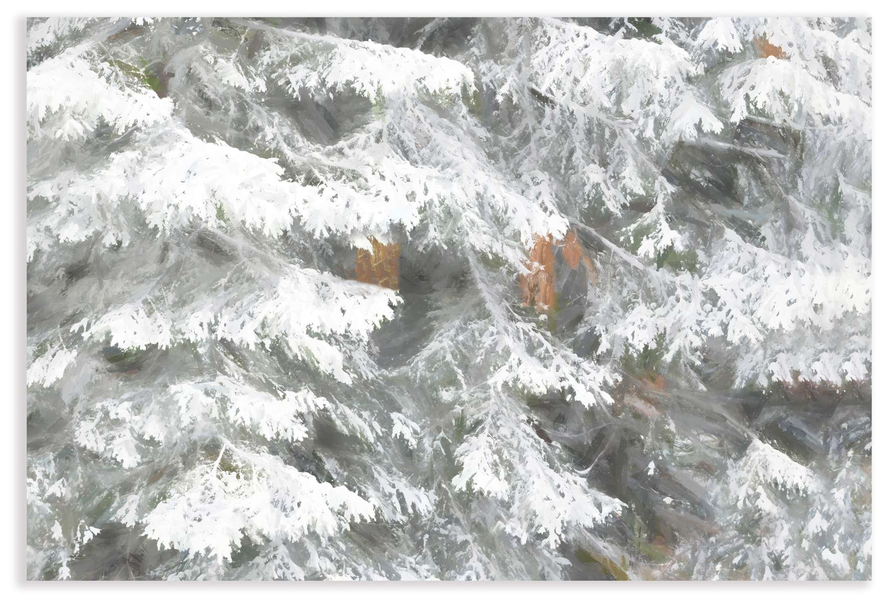 Dreamy-snow-on-tree---for-web