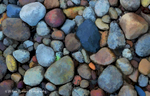 Pebbles-_Roeser_