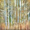 Roeser---Shaver-Aspen---Spectrum-Newsletter