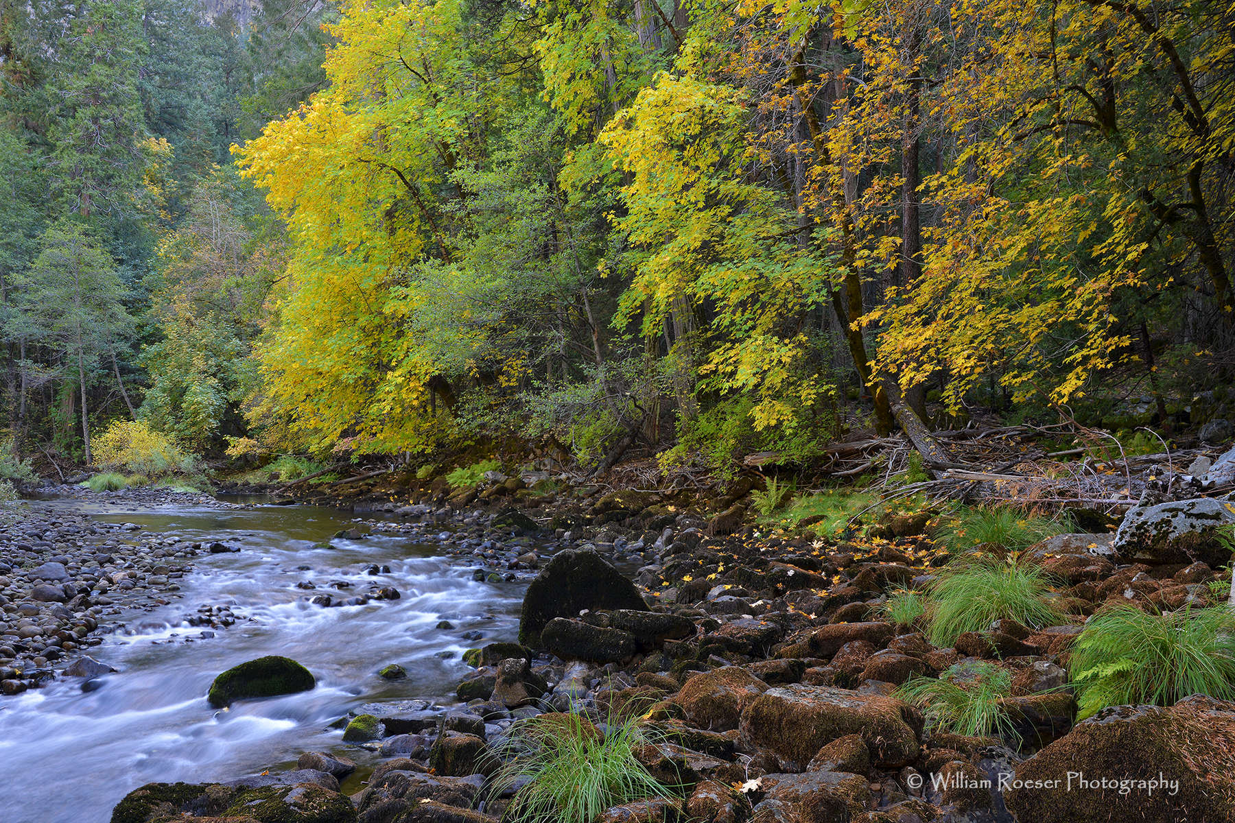 Yosemite-Fall-River-_Roeser_