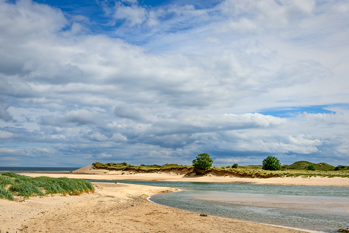 Alnmouth, EnglandImage No: 15-032443  Click HERE to Add to Cart