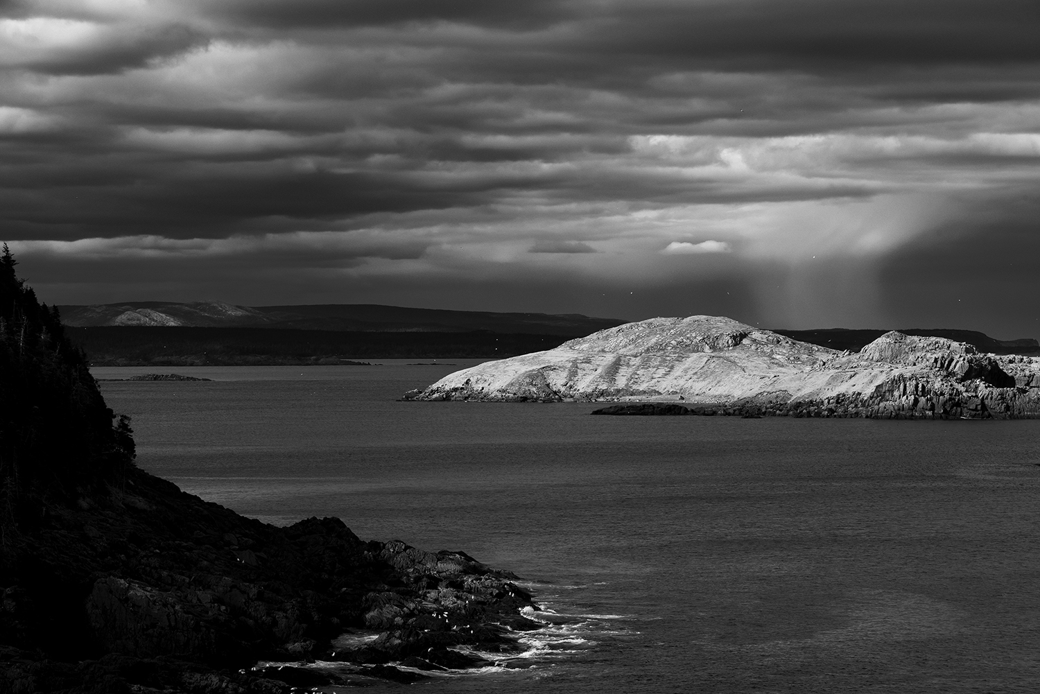 Newfoundland, CanadaImage No: 19-003973-bw  Click HERE to Add to Cart