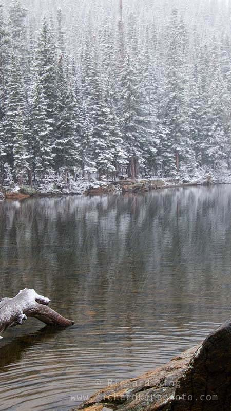 A snowy day in the Rockies,Rocky Mountain National Park, Colorado, USAImage no: 060596.19Click on link to add to cart  http://bit.ly/a7VfQn