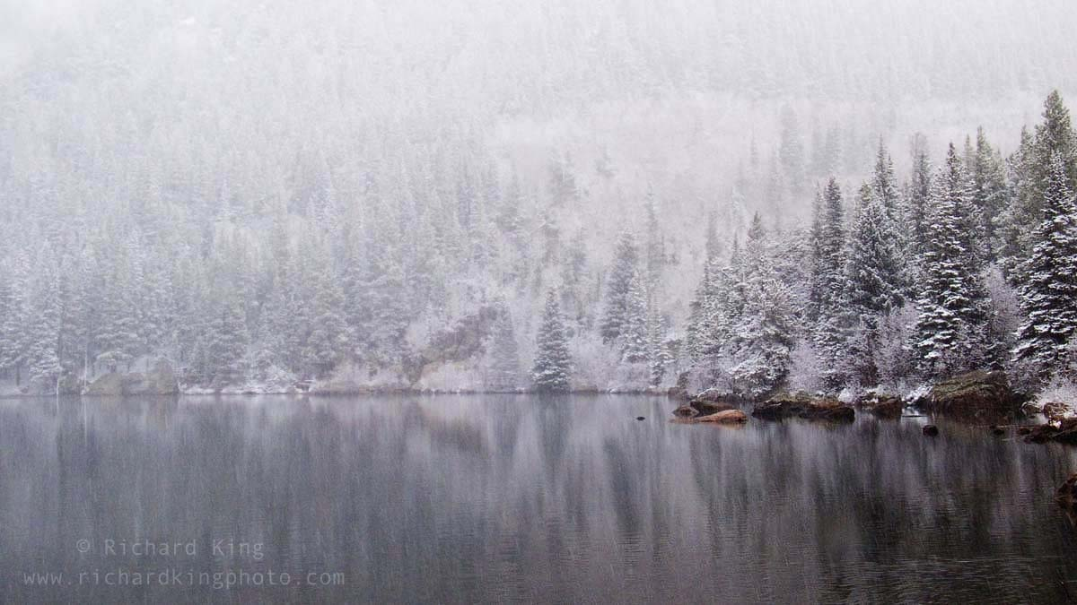 A snowy day in the Rockies, Rocky Mountain National Park, Colorado, USAImage no: 060596.21  Click on link to add to cart  http://bit.ly/9tDjGM