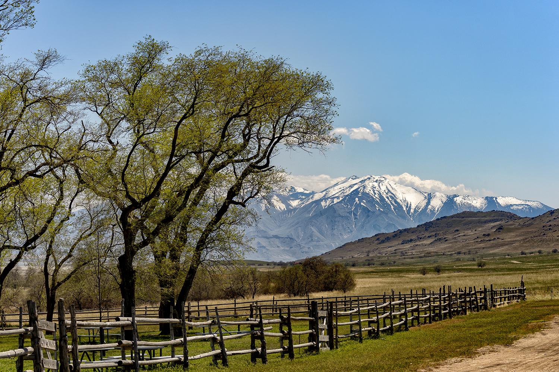 Utah, USAImage no: 18-009215  Click HERE to Add to Cart
