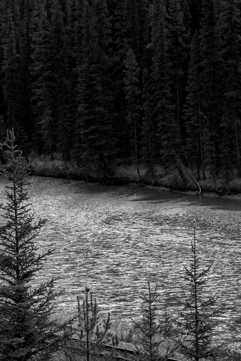 Lake Louise, Alberta, CanadaImage no: 16-383901-bw  Click HERE to Add to Cart