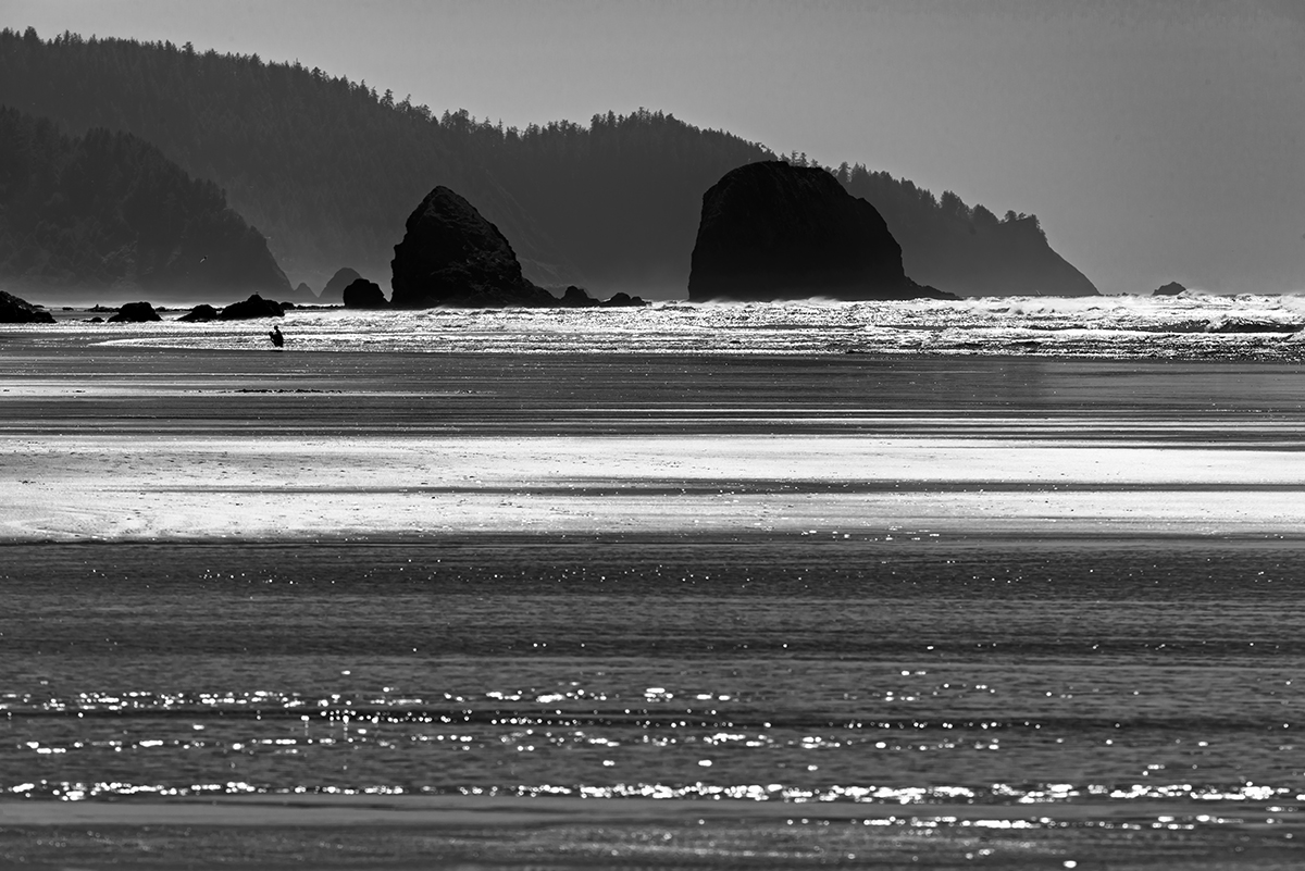 The Oregon CoastImage no: 16-007727-bw   Click HERE to Add to Cart