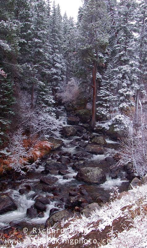 A snowy day in the Rockies,Rocky Mountain National Park, Colorado, USAImage no: 060586.11Click on link to add to cart  http://bit.ly/9hl92m