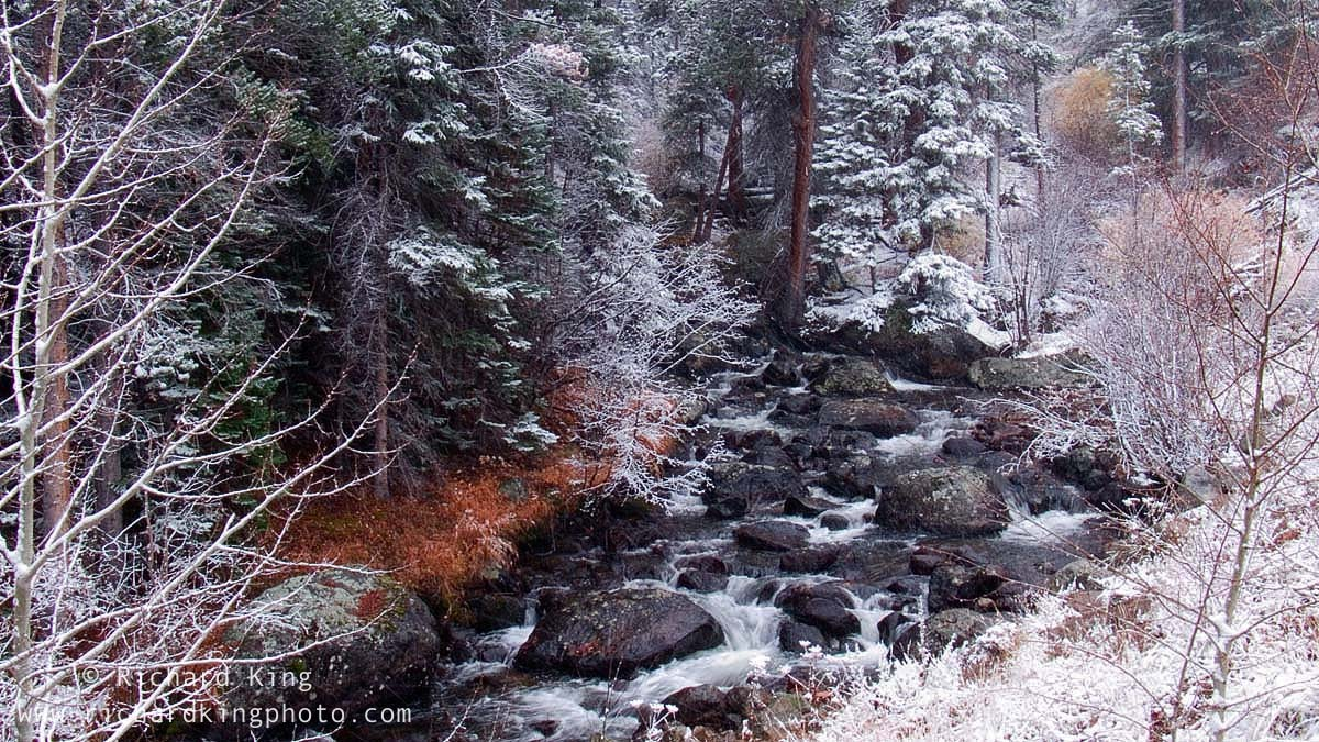 A snowy day in the Rockies, Rocky Mountain National Park, Colorado, USAImage no: 060586.12  Click on link to add to cart  http://bit.ly/bhziqh