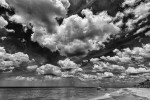 Venice, Florida, USAImage no: 13-014163-bw  Click HERE to Add to Cart