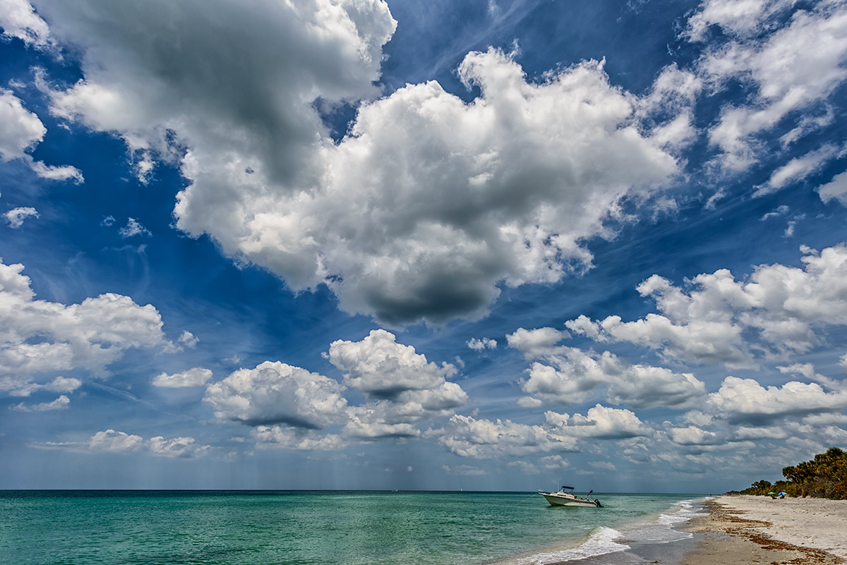Venice, Florida, USAImage No. 13-014163  Click HERE to Add to Cart