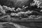 Venice, Florida, USAImage No: 13-014186-bw   Click HERE to Add To Cart