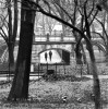 Central Park, Manhattan,New York, USAImage no: 020061.05Click on link to add to carthttp://bit.ly/bbBNry
