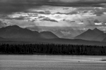 Glenn Highway Tok Cutoff, Alaska, USAImage no: 16-028259-bw   Click HERE to Add to Cart