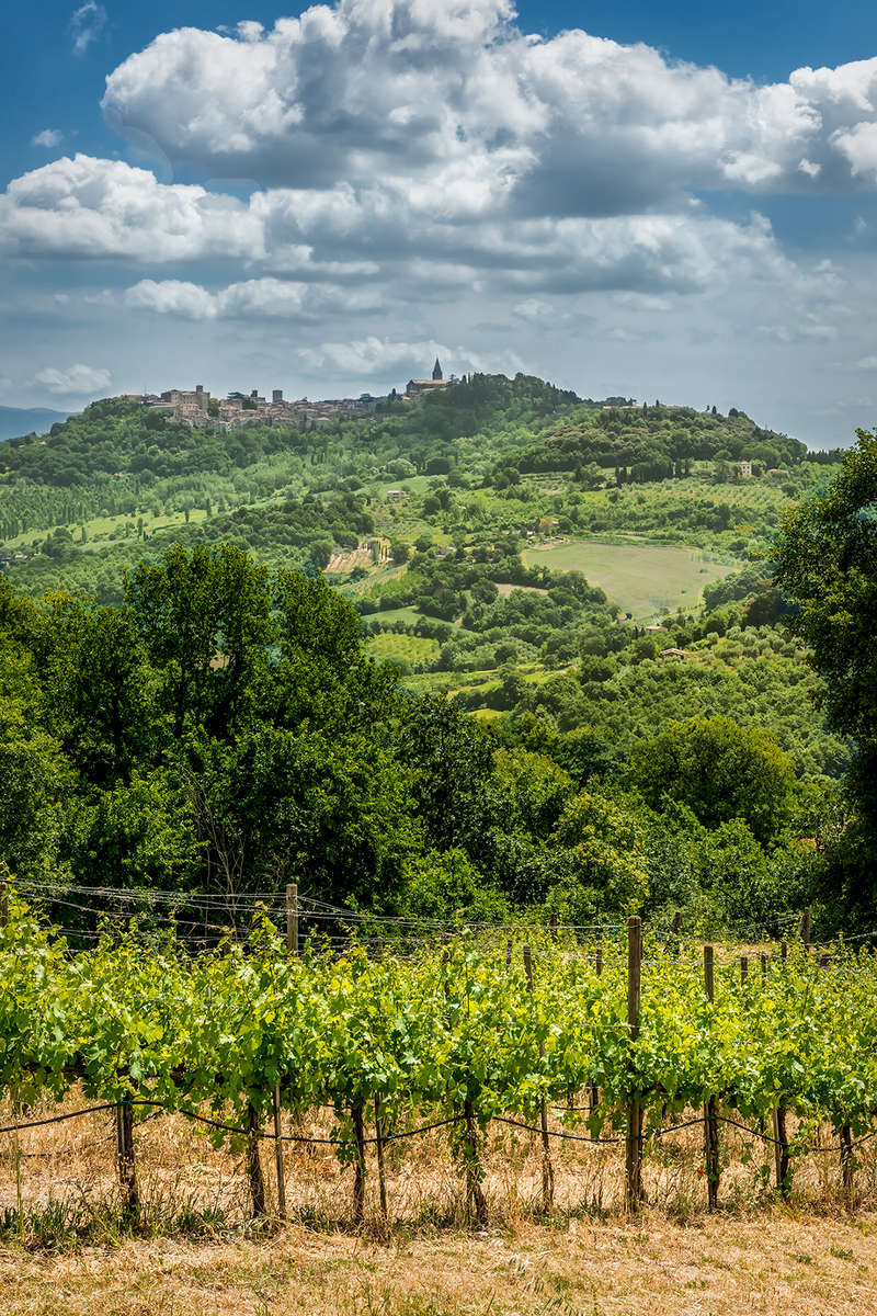 Umbria, ItalyImage no: 15-028655    Click HERE to Add to Cart