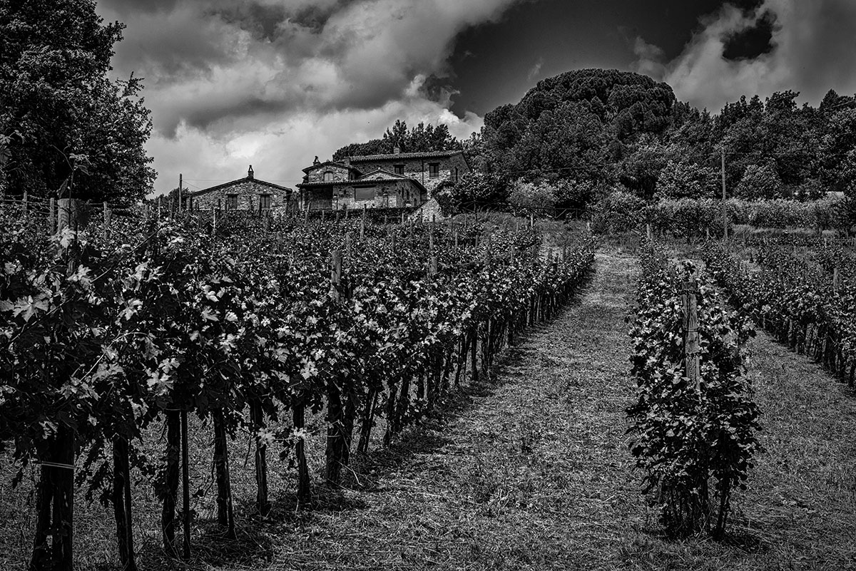 Umbria, ItalyImage no: 15-028665.bw   Click HERE to add to cart