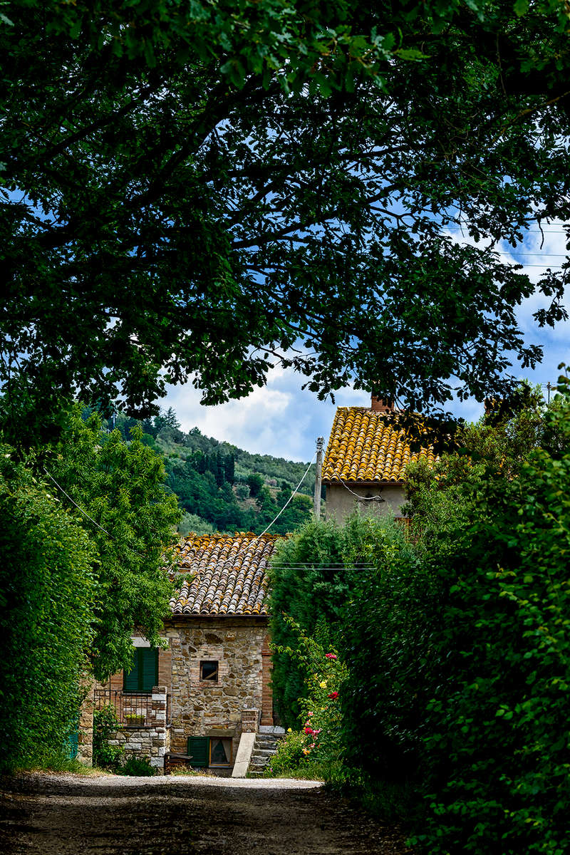 Umbria, ItalyImage no: 15-029238    Click HERE to Add to Cart