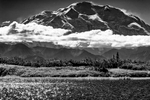 The Alaska RangeDenali National Park Road, AlaskaImage no: 16-309795-bw   Click HERE to Add to Cart