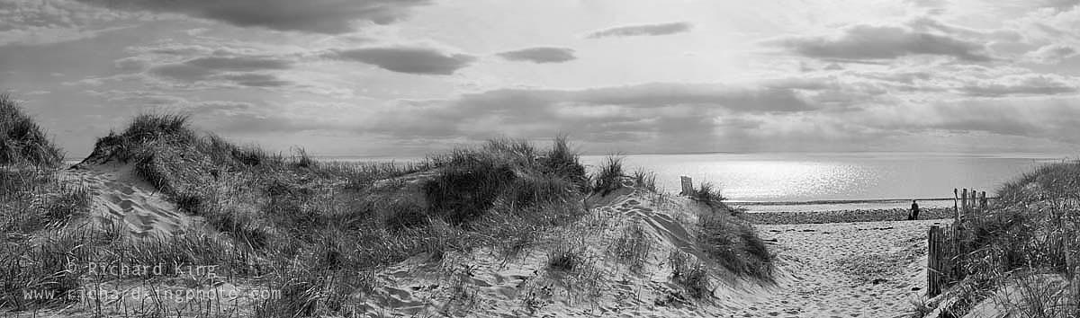 Cape Cod National Seashore, Massachusetts, USAImage no: 070331.0509 Click HERE to add to cart