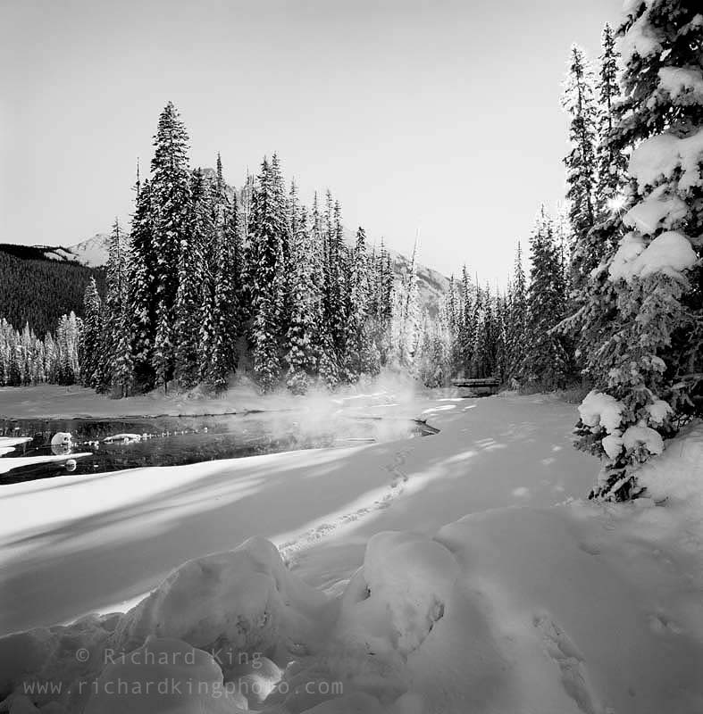 Yoho National Park,British Columbia, CanadaImage no: 090181.09Click HERE to add to cart
