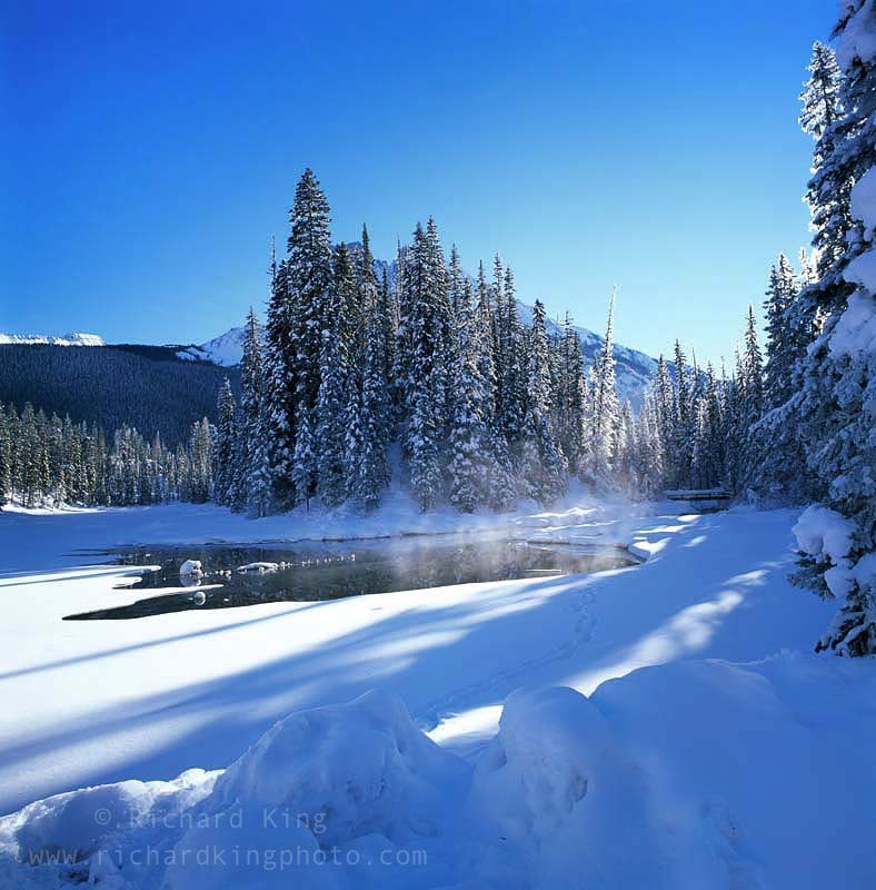 Emerald Lake, British Columbia, CanadaImage no: 090204.02Click HERE to Add to Cart