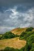 Devon, EnglandImage no: 14-016551   Click HERE to Add to Cart