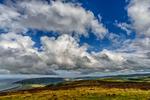 Devon, EnglandImage no: 14-016607   Click HERE to Add to Cart