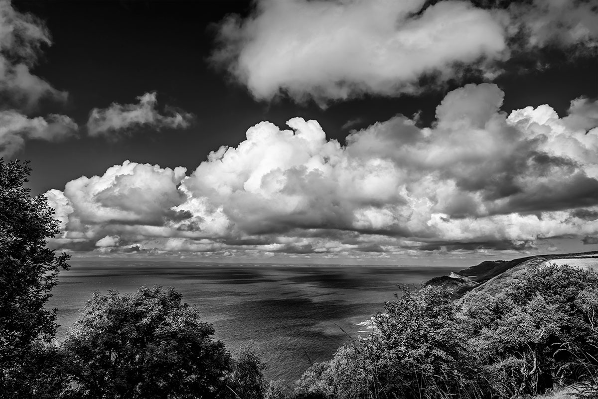 Devon, EnglandImage no: 14-016637-bw   Click HERE to Add to Cart