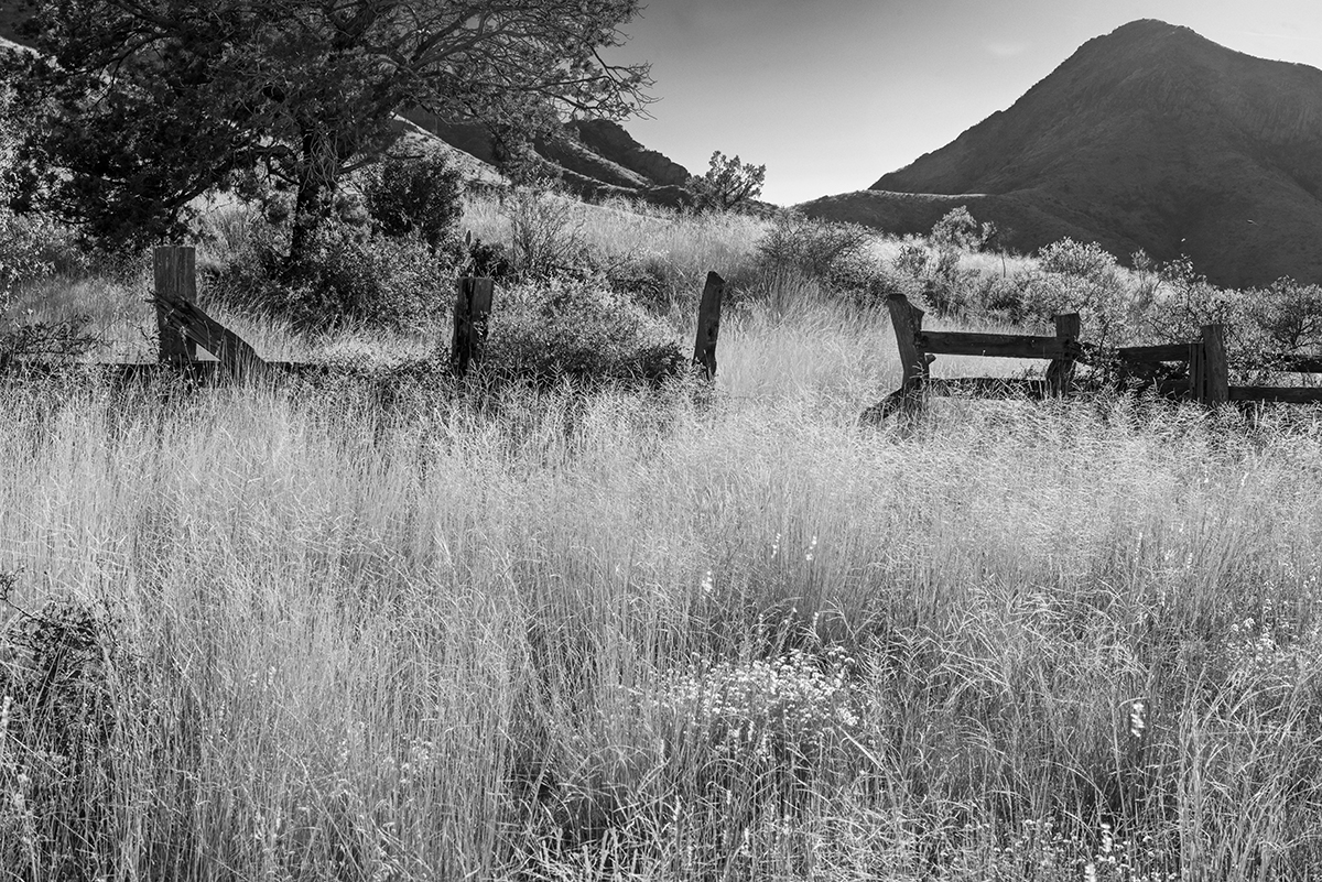 Landscapes from Dripping Springs Hiking Trail, Organ Mountains,Image no: 17-020733-bw   Click HERE to Add to Cart