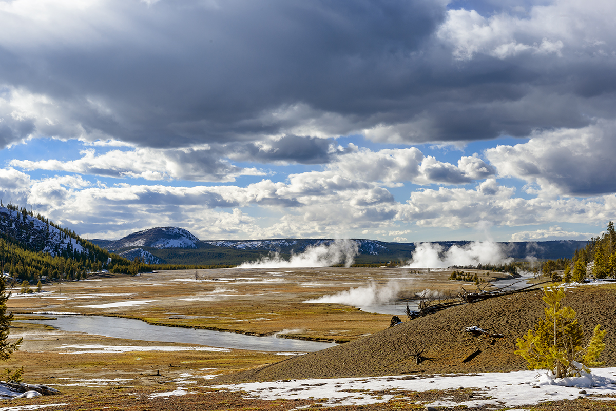 Winter Landscape and wildlife photographs from Yellowstone National Park, WY, USAImage No: 17-006150   Click HERE to Add to Cart