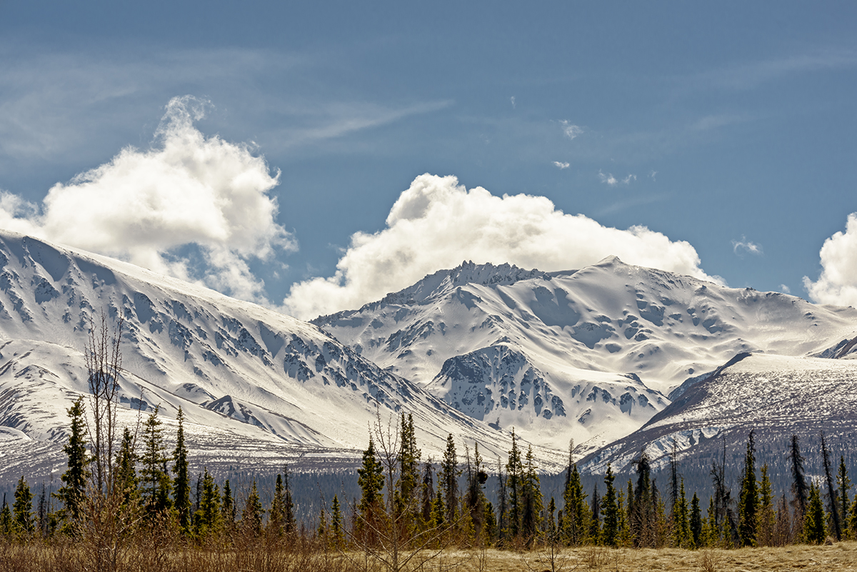 Coast MountainsBetween Haines, Alaska & Haines Junction, YukonImage no: 16-012449   Click HERE to Add to Cart