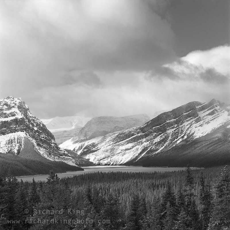 Icefields Parkway,Rocky Mountains,Banff National Park,Alberta, CanadaImage no: 080791.01Click on link to add to cart http://bit.ly/cIkzpu