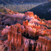 Bryce Canyon National Park, UtahImage no: 021074.02Click HERE to Add to Cart