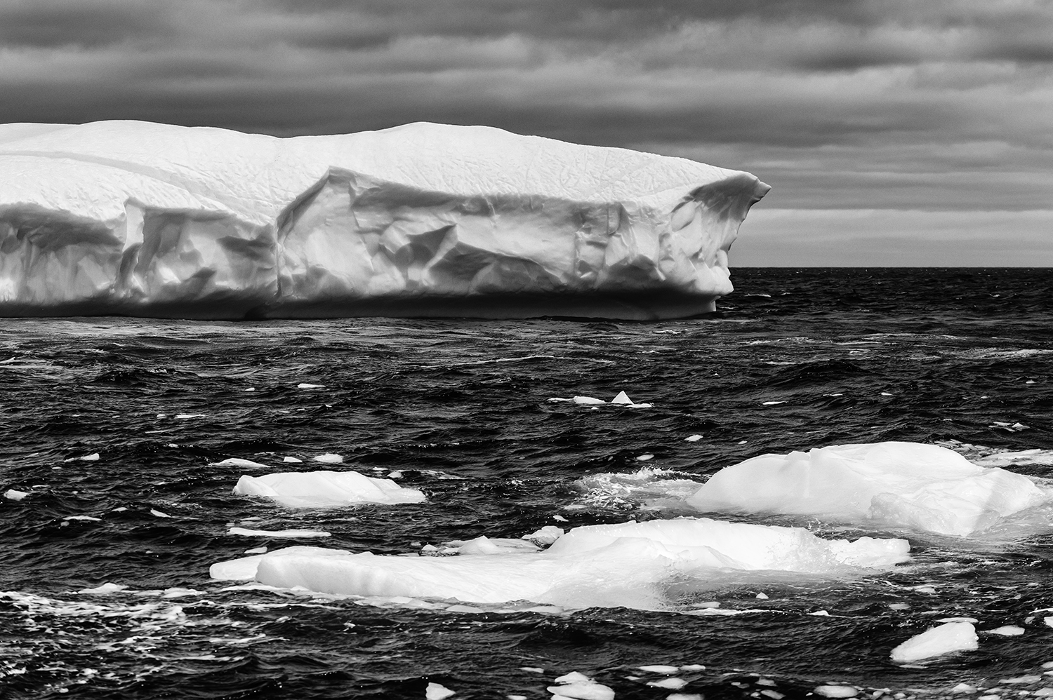 Newfoundland, CanadaImage no: 19-004476-bw  Click HERE to Add to Cart