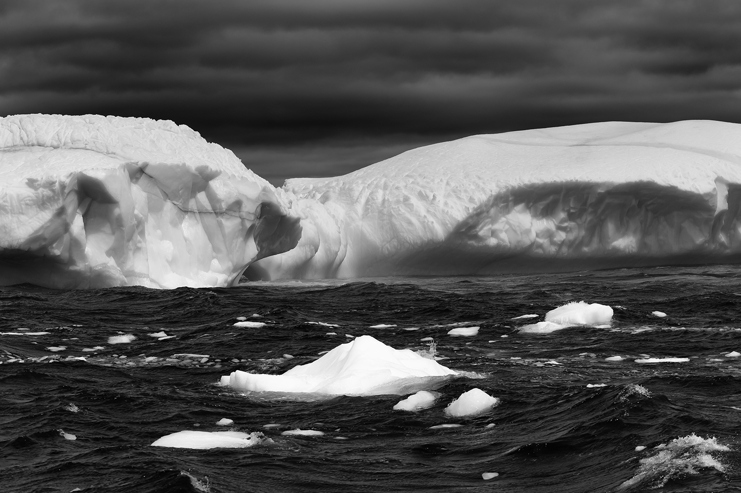 Newfoundland, CanadaImage no: 19-004483-bw  Click HERE to Add to Cart