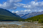Icefields Parkway (Highway 93), AlbertaImage no: 16-383548  Click HERE to Add to Cart